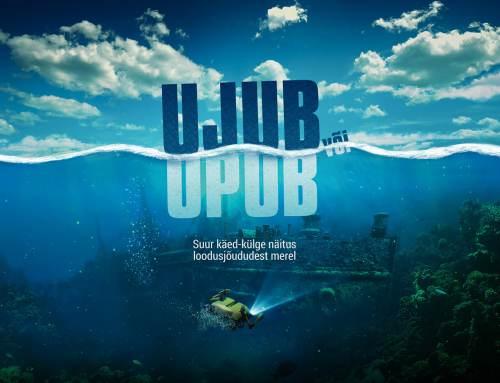 """""""Ujub või Upub?"""" näitusegraafika"""